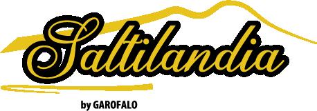 Saltilandia